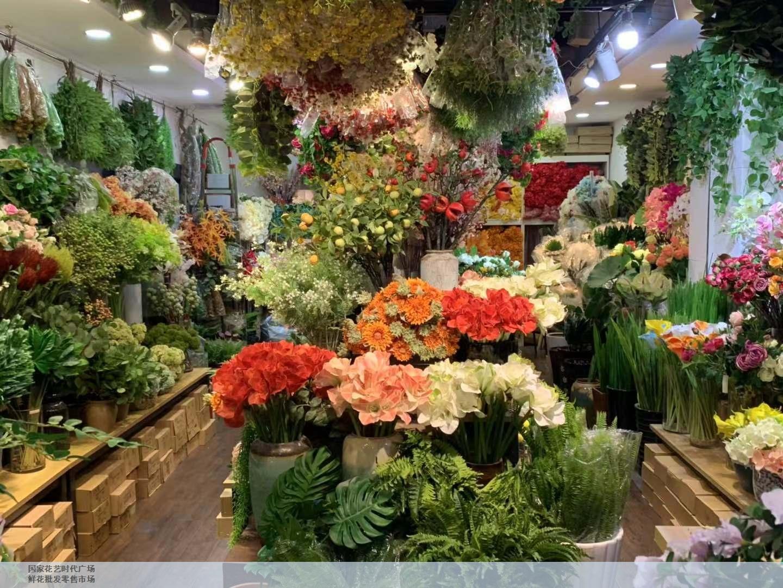 奉贤区口碑好鲜花批发源头好货 服务至上 上海求珍企业管理供应