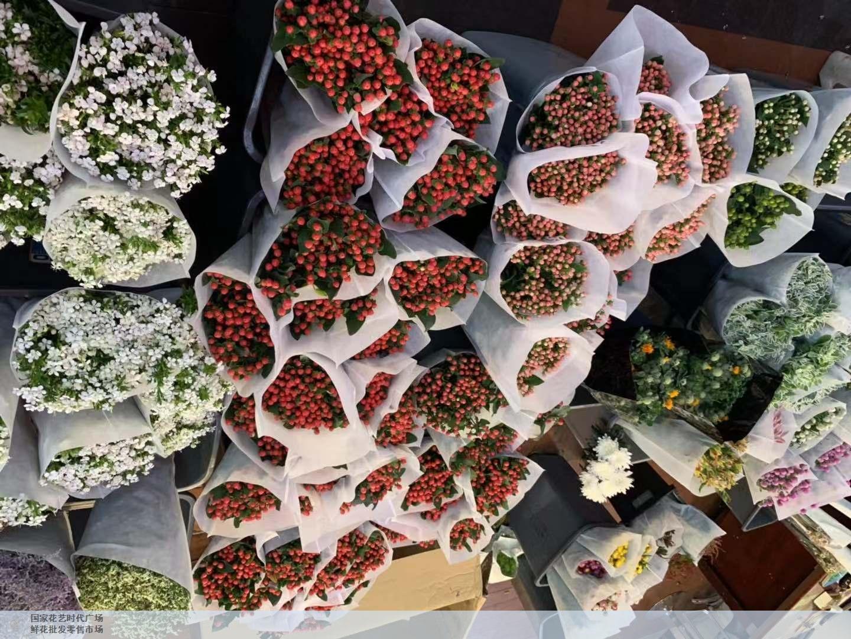 长宁区知名鲜花批发畅销全国 客户至上 上海求珍企业管理供应