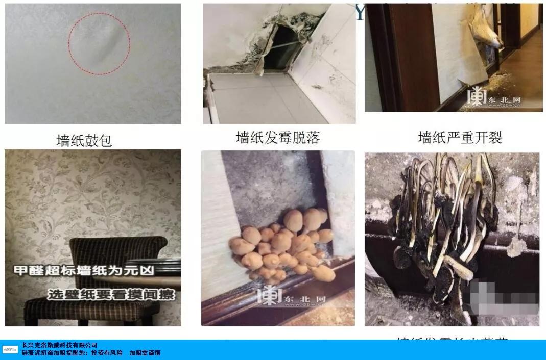 天津全国硅藻泥加盟品牌 抱诚守真 长兴克洛斯威科技供应