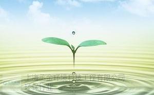 闵行区餐饮建设项目环境影响登记表委托,建设项目环境影响登记表