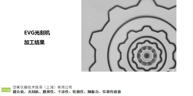 中国香港光刻机联系电话 客户至上「岱美仪器技术服务供应」