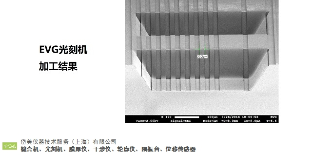 重庆光刻机国内用户 创新服务「岱美仪器技术服务供应」