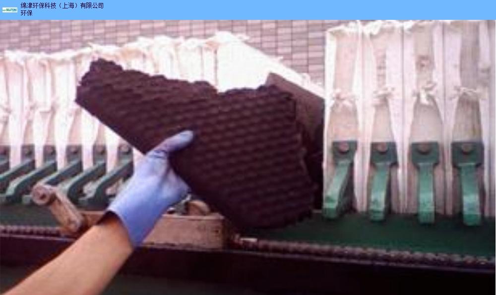 上海销售生物促进水质净化菌优质商家 来电咨询「绵津环保科技(上海)供应」