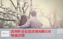 南京官方咨询情感 有口皆碑「苏州叶业信息咨询供应」