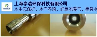 浙江专用微纳米气泡发生器黑臭水体治理,微纳米气泡发生器