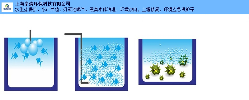 浙江专用微纳米气泡发生器在线咨询,微纳米气泡发生器