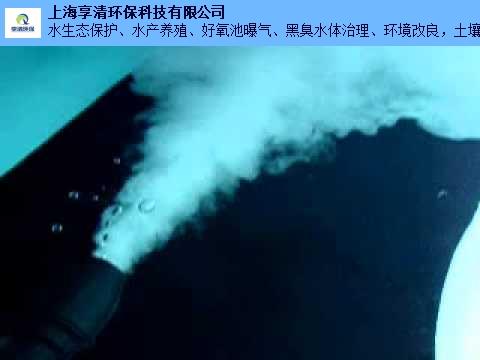 广州微纳米曝气机厂家哪家好 值得信赖「上海享清环保科技供应」