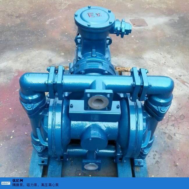 連云港電動隔膜泵報價 客戶至上 優尼柯環保設備供應