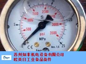 广州绝压压力表服务商 有口皆碑 苏州知非机电设备供应