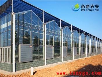 上海拓新农业科技有限公司