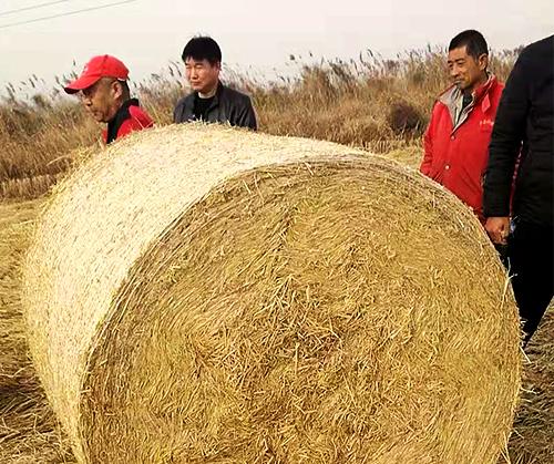 揚州花生秧秸稈制造廠家「瑞禾供」