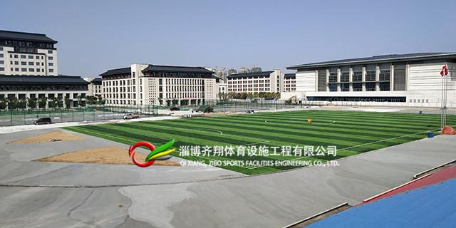 滨州学校人造草坪公司口碑,人造草坪