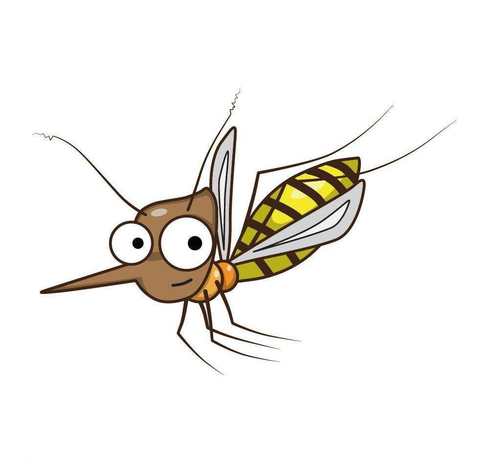 专业消灭公园蚊子价格