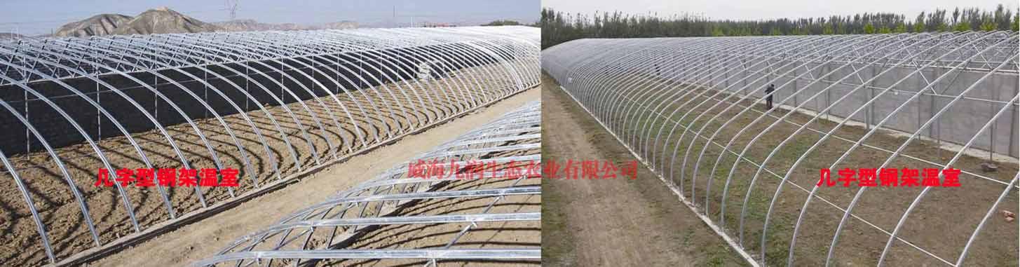 栖霞优质玻璃温室销售价格 客户至上「威海九润生态农业供应」