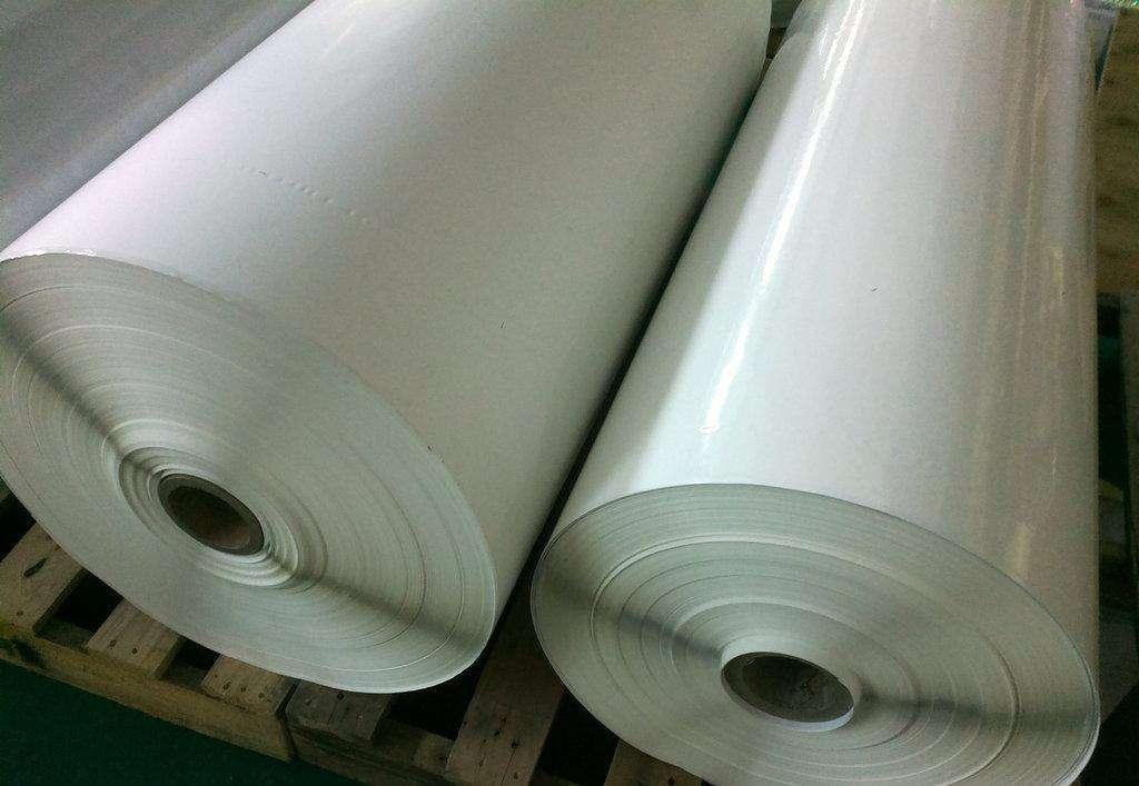 贺州合成纸厂家 创新服务「河南皓派信息科技供应」