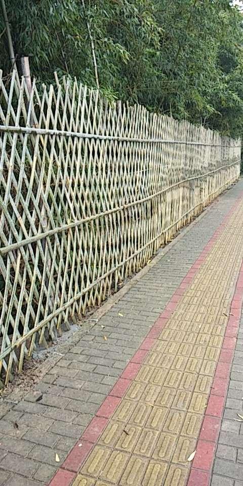 黄浦区知名竹篱笆搭建销售价格 信誉保证「上海建珏建筑工程供应」