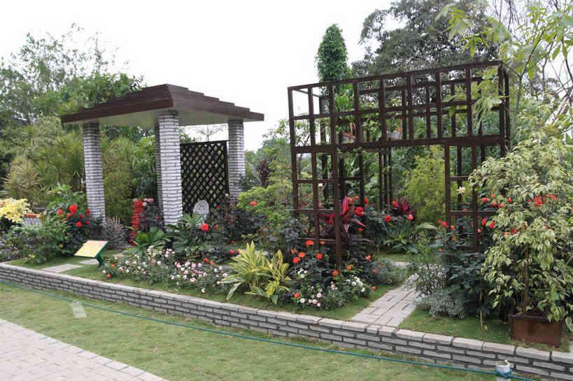 专业园林绿植租赁哪家好「南京春之恋景观工程供应」