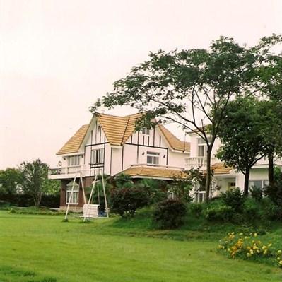 杨浦区专业绿化工程服务放心可靠,绿化工程