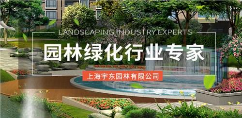 青浦区直销绿化工程信赖推荐,绿化工程