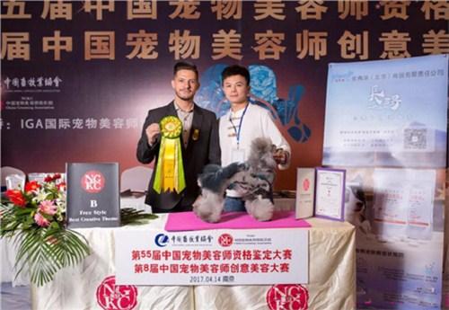 汉阳区一对一宠物美容师培训 卓越服务「武汉彼丕振兴宠物咨询供应」
