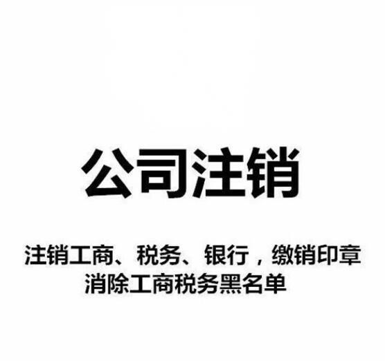 公司注册注册资本变更公司注销年审年报法人