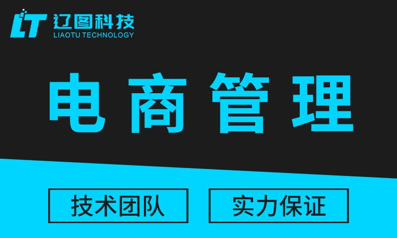 电商订单管理系统开发电商APP开发营销系统