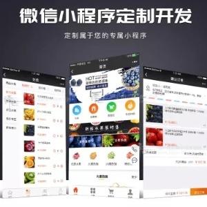 微信小程序app开发定制 抽奖软件企业公众号搭建公众号微商城开发 水果餐饮附近小程序分销 游戏制作