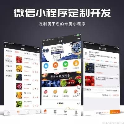 微信小程序开发 微商城外卖团购门店 H5官网小程序 分销系统公众号