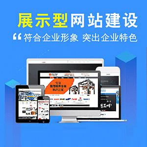 网站建设_展示型公司官网_网站建设多年经验