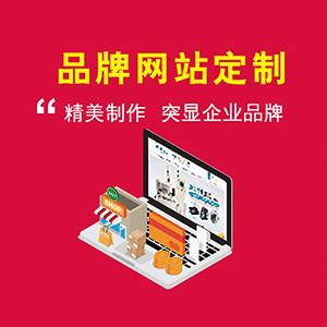 定制建站_定制网站_公司官网_展示型网站