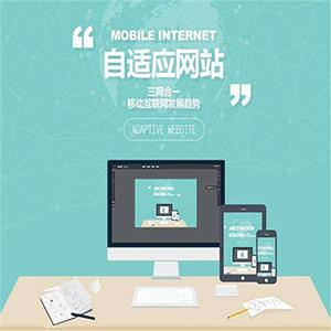 网络推广网站建设一站式服务SEO优化官网制作