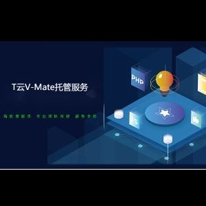 T云V-Mate托管服务