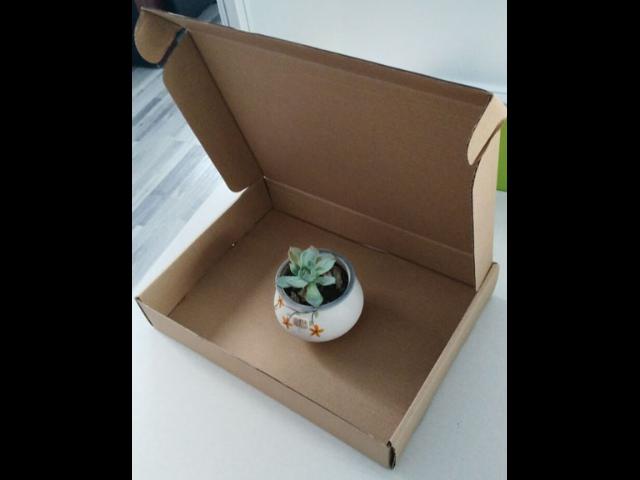 琼海礼包飞机盒「佛山市源通纸业供应」