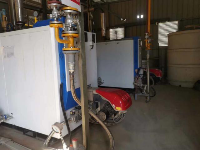 丽水卧室燃油气蒸汽发生器什么价格 有口皆碑  宁波广丰热能科技供应