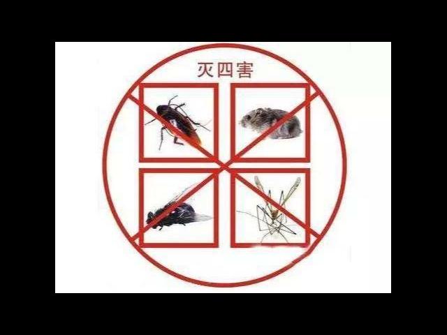 句容学校杀虫灭鼠公司哪家好「江苏华美环保工程服务供应」