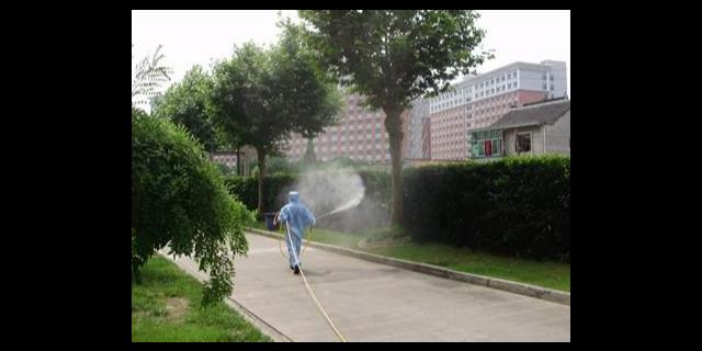 扬州小区杀虫灭鼠公司怎么样,杀虫灭鼠公司