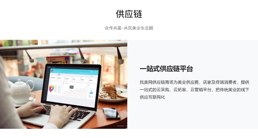中山SaaS系统应用领域 欢迎咨询 广州市找美网科技供应
