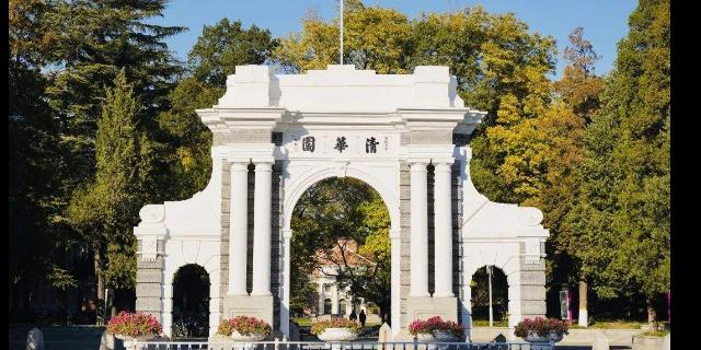 云南高考艺术培训机构 云南金领教育咨询供应