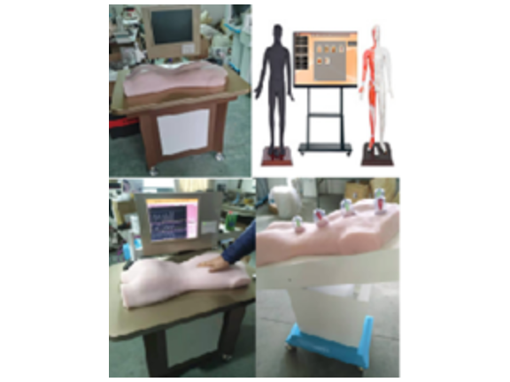 杭州中医3D模拟人厂家