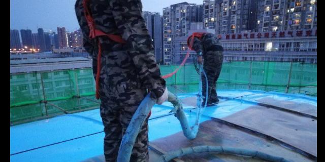 江苏坝体防护聚脲价格 山东德士力新材料科技供应