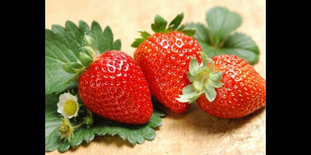 进口水果配送哪家好「无锡金一圣农产品供应」