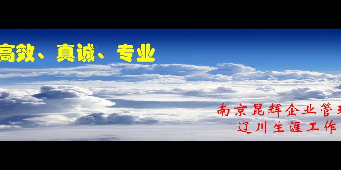 线下职业规划咨询包括什么 欢迎咨询「南京昆辉企业管理供应」