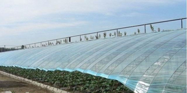 西宁质量好的棚膜销售「西宁稼蔬农牧建设开发供应」