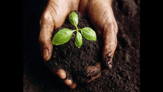 上海环保土壤检测机构 抱诚守真 上海绿环商品检测供应