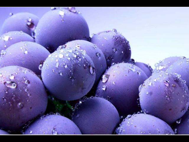 吴江附近批发水果市场在哪里 真诚推荐 苏州市开拓果蔬贸易供应