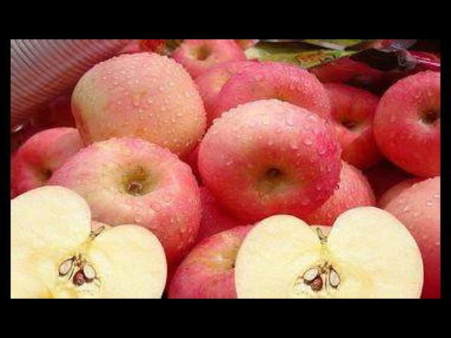 蘇州南環橋蘋果基地報價 誠信互利「蘇州市開拓果蔬貿易供應」