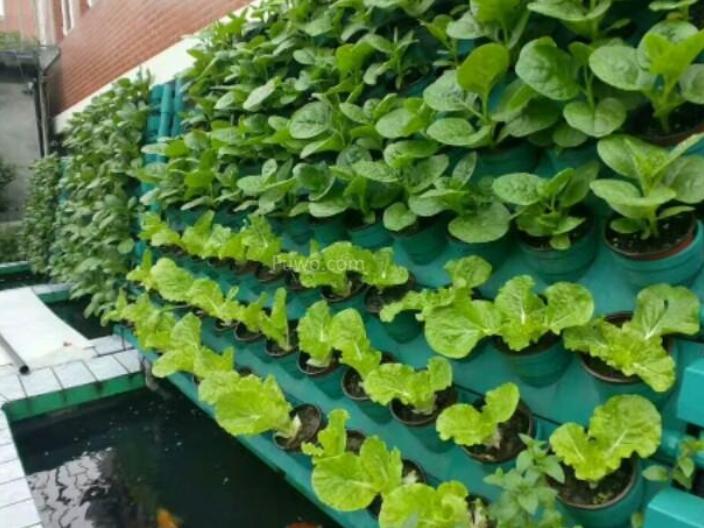 汕頭建設智慧農業系統價格多少 歡迎咨詢 深圳昕昀生態科技供應