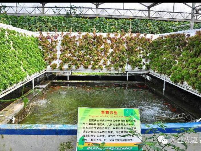 广东数字智慧农业系统公司