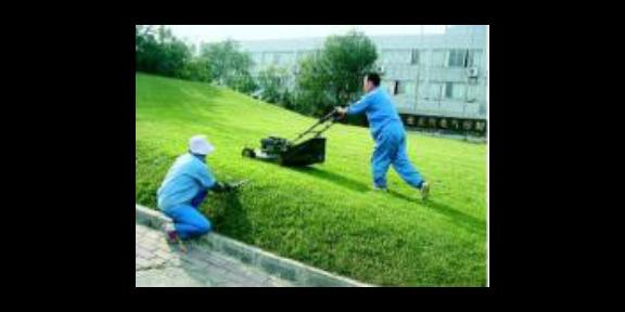 天河区粪池清理清洁