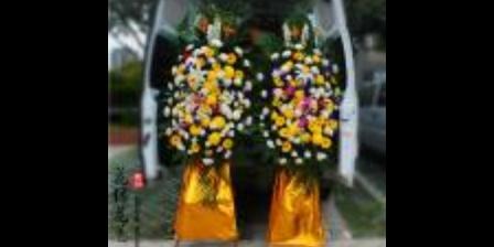 金山区殡葬车,殡葬